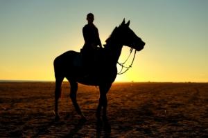 Go Horse Riding in Petra