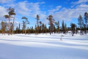 Snow in Kiruna
