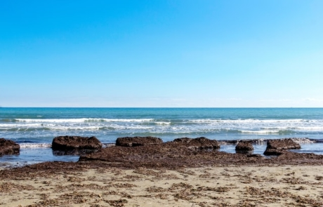 Beach in Larnaca