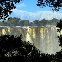 View of Victoria Falls through tress