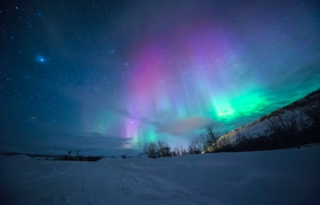 Northern Lights over snow in Tromso