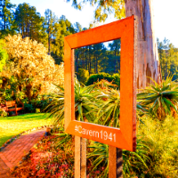 A picture sign with vegetation in the background