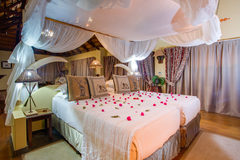 Rose petals on a bed in a suite