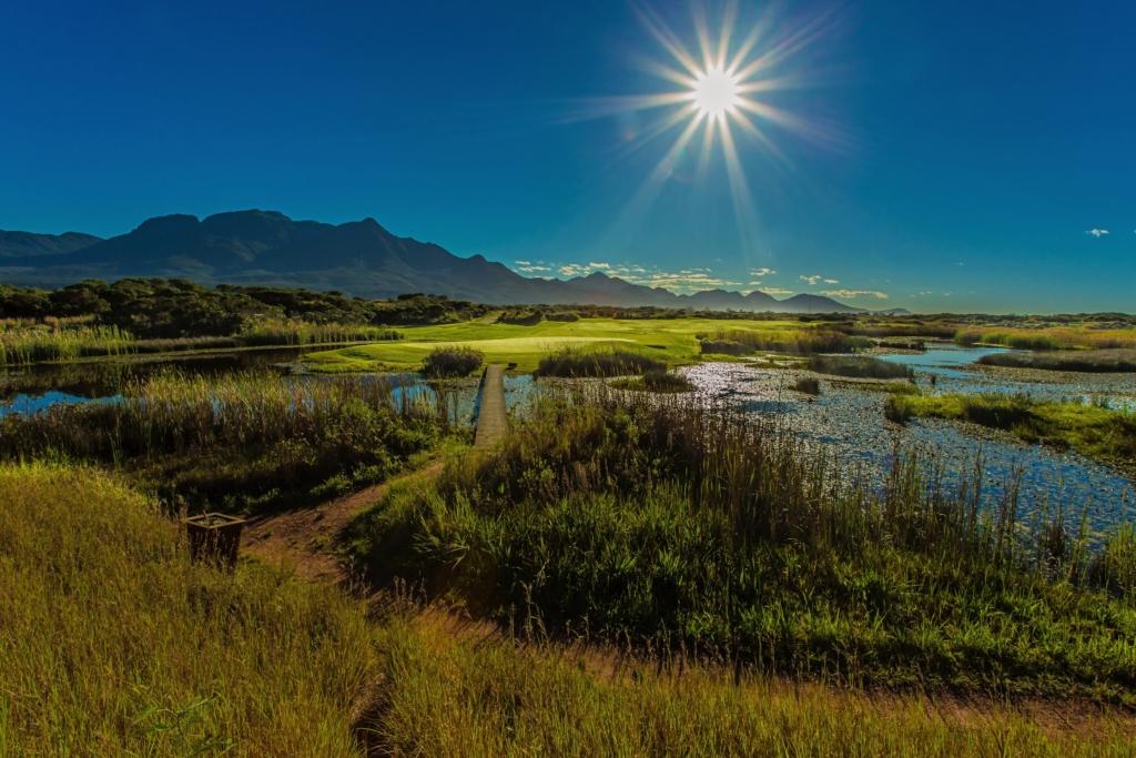 Sun shining on a golf course