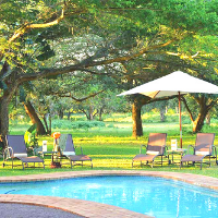 Pool area with lie back chairs and bush in the background