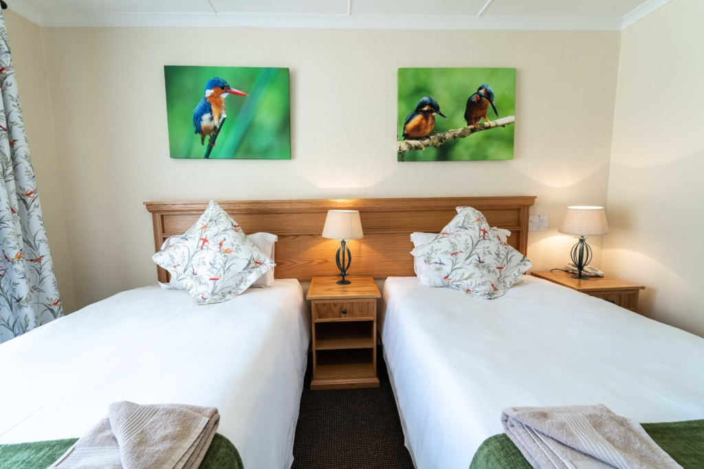 Two single beds in a room with bird pictures above them
