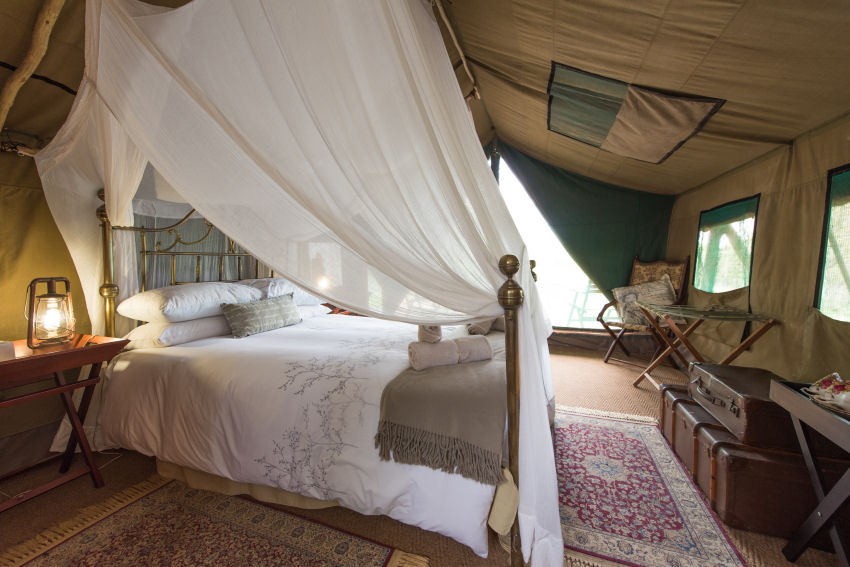 Bedroom with draping over the bed