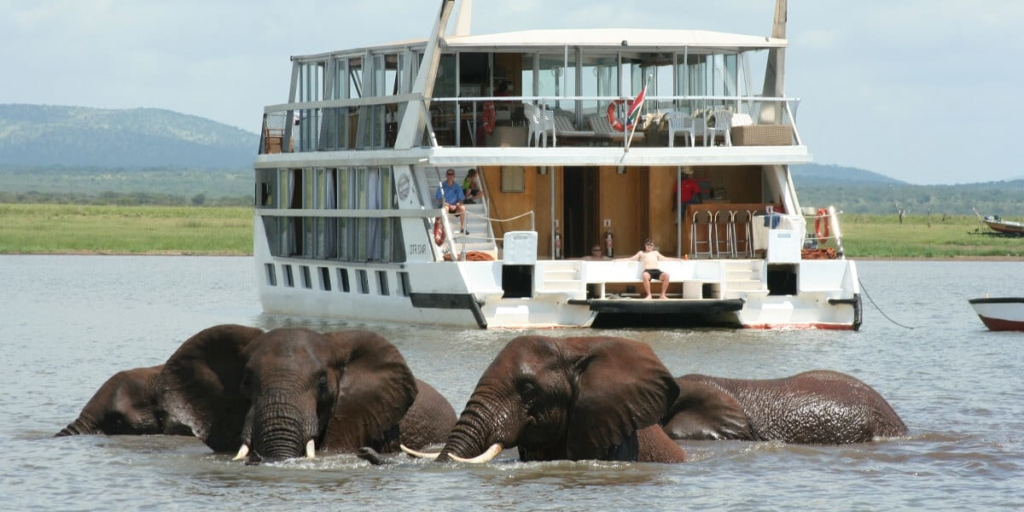 Elephants showing each other affection with a houseboat in the background